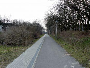 Trasa biegowa / Zielona strzała (2,2 km)