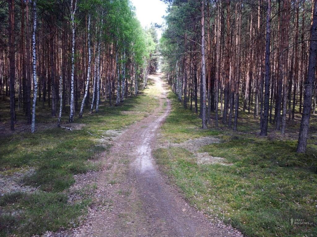Ronin Race (10,2 km)