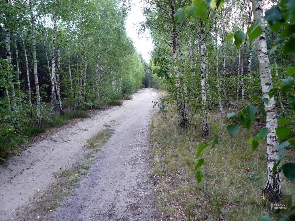 Czas na sport (9,7 km)
