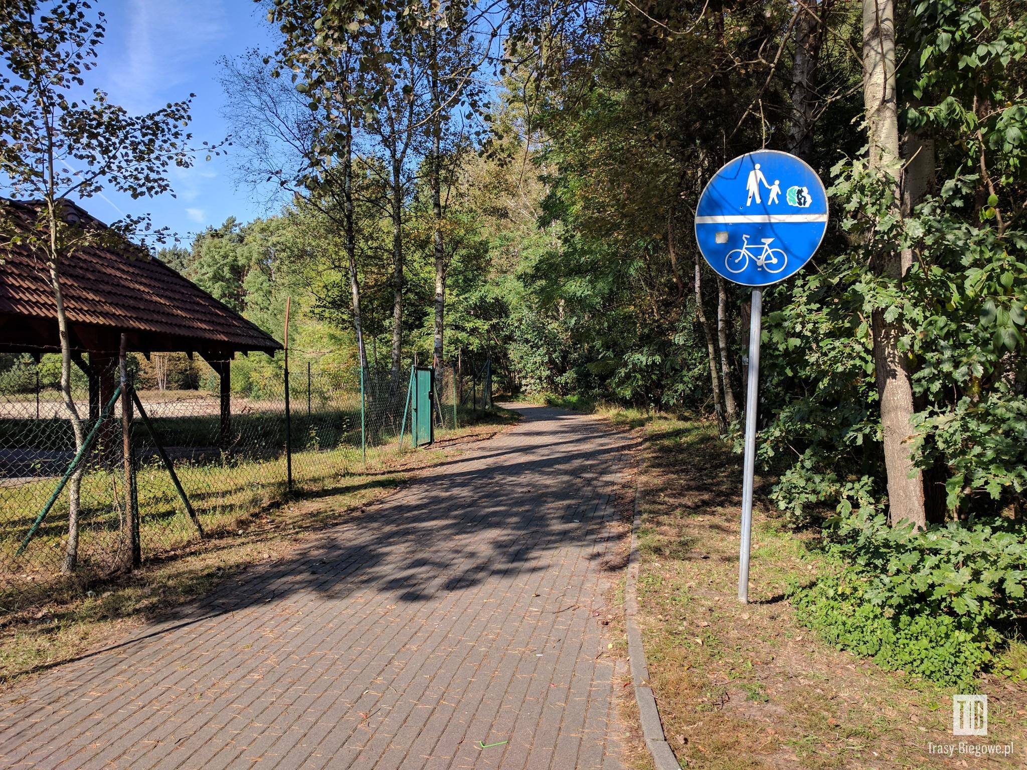 II Zielonogórski Bieg Górski – Rollercoaster 10k (10,1 km)