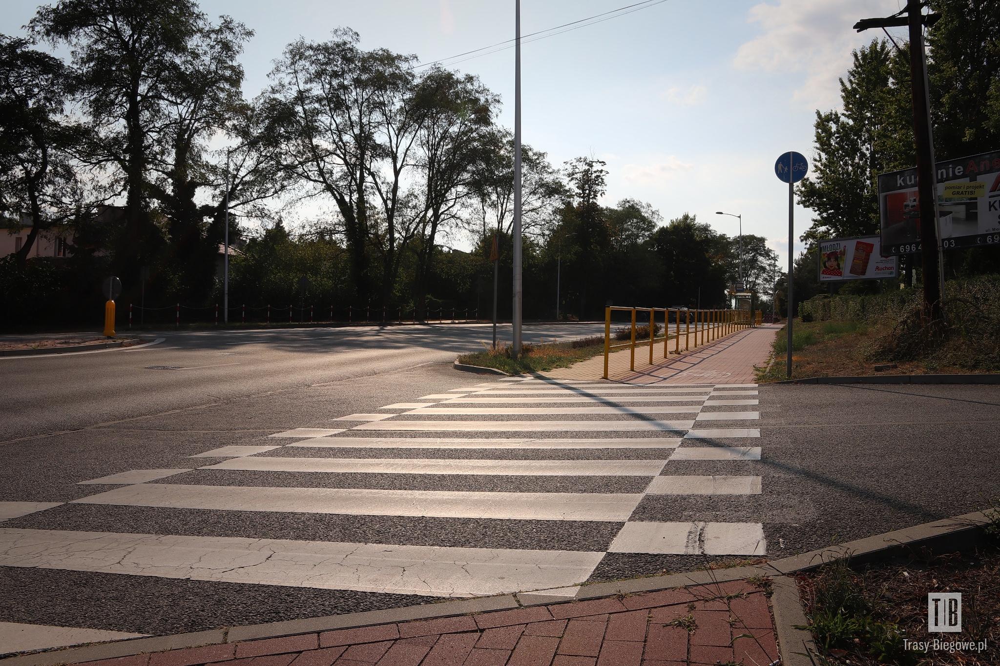 2 Charytatywny Bieg Gladiatora (6,6 km)